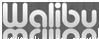 El Dorado Hills Web Design